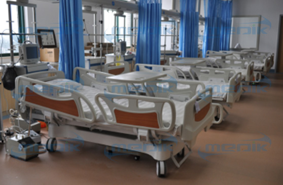 The BGH group bought 295 electric beds from Medik
